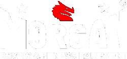 Morgan Sports logo